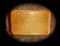AMAZING Ancient Kauri Wood Belt Buckle 50000 Years Old by arena1, $89.00