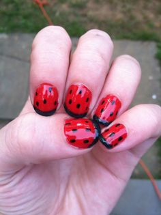 Supposed to be watermelon nail art but the green came out basically black. More lady bug I guess