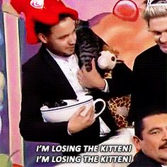 Omg omg I pinned this like 3 times but omg there are 2 MORE KITTENS IN THE GIANT TEACUP THAT LIAM IS HOLDING AWWWW