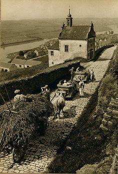 dr Paul Wolff 1938 Frickenhausen   Flickr - Photo Sharing!