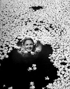 Eliot Elisofon: Young girl swimming in pool covered with gardenia blossoms. Mexico, 1945