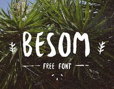 "Check out this @Behance project: ""Besom - FREE Brush font "" https://www.behance.net/gallery/22459913/Besom-FREE-Brush-font-"