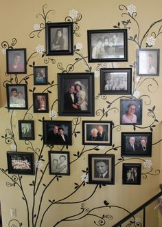 family tree, smaller B pictures, same frames and matting...