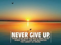 Funny inspirational quotes about not giving up never give up hd motivation wallpapers