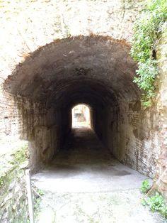 Palatine area - Rome, Italy