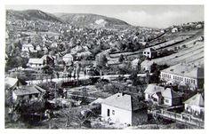 Máriaremete látképe, előtérben a kertváros a Nagyrét utcával, 1950 körül Budapest, Paris Skyline, Travel, Viajes, Destinations, Traveling, Trips
