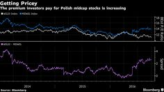 Poland's equity investors are sidestepping government efforts to encroach on state companies by piling into stocks of medium-sized firms instead.