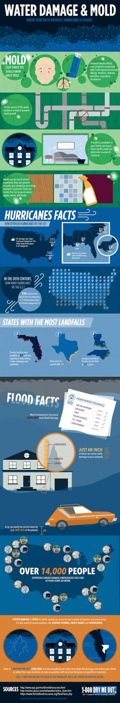 An infograph detailing some of the facts we have seen around water damage and mold as well as some facts on hurricanes and their landfalls in the U.S.