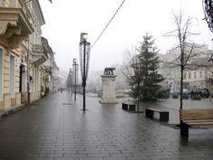 Panoramio - Photos by Ani Catalina > Cluj-Napoca - Bd. Eroilor