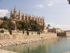palma Barcelona Cathedral, Building, Travel, Palmas, Voyage, Buildings, Viajes, Traveling, Trips