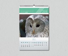 Wandkalender zum Download