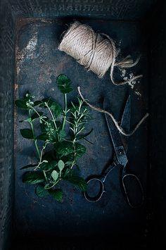 rusticmeetsvintage: Herbs by -Call me cupcake- #flickstackr Flickr http://flic.kr/p/o4NCTq
