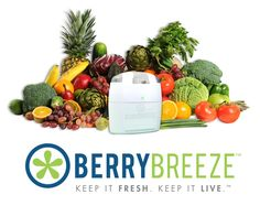 BerryBreeze™ $50 for the greatest gift this holiday season! No size or color to get wrong - if you have a fridge and value saving money on food and killing bacteria - BerryBreeze™ is for you! https://www.berrybreeze.com/store/