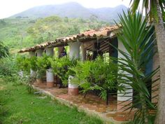 La Ruta del Café - Hacienda La Aida (Posada) - Venezuela Tuya