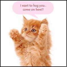 i want to hug you !!