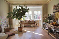 Grönska i hemmet ger lugn i sinnet och jag älskar de riktigt stora växterna som jag dessutom använder som rumsavdelare. En växt som jag håller väldigt kär och som har blivit väldigt stor är...