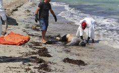 Libya coast death toll reaches 150, presumably illegal migrants  http://www.ibtimes.com.au/libya-coast-death-toll-reaches-150-presumably-illegal-migrants-1463132