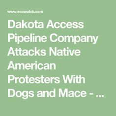 Dakota Access Pipeline Company Attacks Native American Protesters With Dogs and Mace - EcoWatch