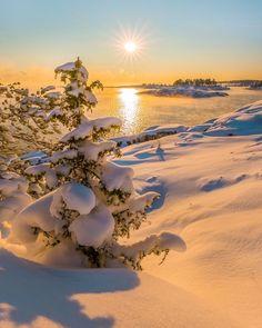 Snowy winter (Lake Ladoga, Karelia Region, Russia) by Fedor Lashkov ❄️🌅 is part of Winter scenery - Winter Sunset, Winter Love, Winter Scenery, Winter Photography, Landscape Photography, Nature Photography, Winter Pictures, Nature Pictures, Beautiful Pictures
