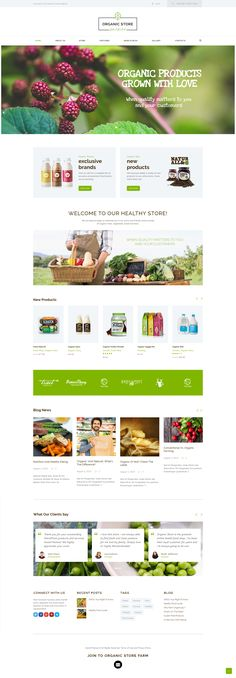 Organic store is a colorful, modern & responsive Organic Food WordPress Theme. It is perfectly suitable for natural food Farm Websites, Healthy Food Blogs, Healthy Recipes, Site Inspiration, Food Web Design, Site Vitrine, Bakery Store, Food Website, Website Ideas