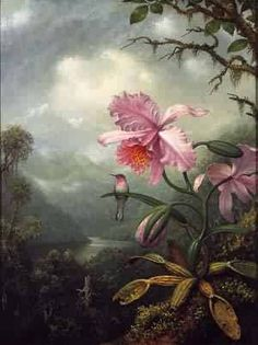 Google Image Result for http://www.oceansbridge.com/paintings/artists/h/heade_martin_johnson/big/Hummingbird_Perched_on_an_Orchid_Plant_1901.jpeg