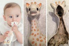 Schimmel in Kinderspielzeug: Ist Giraffe Sophie gesundheitsgefährdend?