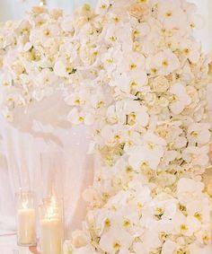 All white floral runner inspiration Winter Wonderland Wedding Theme, All White Wedding, Event Design, Wedding Inspiration, Floral, Events, Beautiful, Flowers, Flower