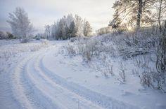 Зимний пейзаж на берегу канала имени Москвы.Россия.(фото №34)