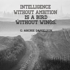 Without your ambition to get you there, your intelligence is useless. A bird may want to fly, but without its wings it cannot do so.