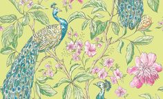 1000 ideas about free wallpaper samples on pinterest