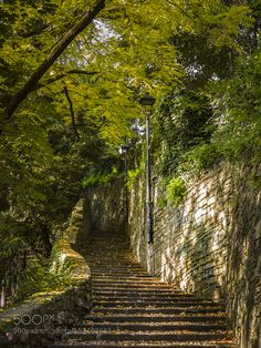 Popular on 500px : Bergamo  To discover Città Alta (upper Town) choose a way up! by SwissFiveNine