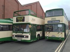 Blackpool, Coaches, Buses, Transportation, Classic, Modern, Derby, Trainers, Trendy Tree