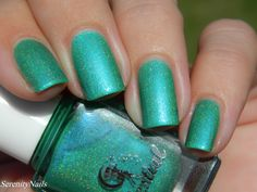 Evergreen Eucalypts swatched by @seren