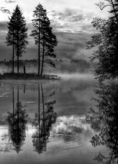 Black&white morning by Stefan Johansson / 500px (Sweden)
