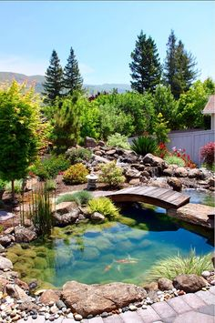 Koi-Pond.-Koi-Pond-Garden-Ideas.-Ami-Saunders-MLA.-.jpg 642×966 pixels