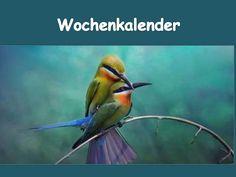 """WOCHENKALENDER - Karins Kalender Vor dieser Übung: PPt """"Wegbeschreibung - 1""""  + """"Wegbeschreibung - 2"""" A1 bis B1 zu + Dativ mit + Dativ Wochentage mit """"am"""" Kari…"""