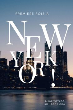 What to do for the first time in New York? Find my 10 must-haves and some more ideas to complete […] New York Travel Guide, New York City Travel, Ellis Island, New York Vacation, Vacation Trips, Nex York, New York Blog, Voyage New York, Voyage Europe