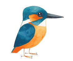 http://mattsewell.co.uk/?p=1712 - he has a bird of the week - they are all awesome.