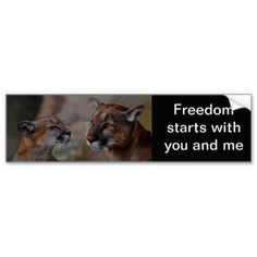 Get stuck in traffic with fun thanks to Cougar bumper stickers or car magnets from Zazzle! Custom car magnets and stickers that stand out! Lion Love, Car Bumper Stickers, Mountain Lion, Car Magnets, Love Car, Animal Kingdom, Custom Stickers, Lions, Freedom