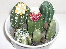stone painted cactus, now everyone can have a green thumb.