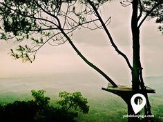 "Yang Cantik dari Imogiri Yogyakarta "" Puncak Becici "",. - http://yukdolanjogja.com/wp-content/uploads/2015/11/21-1024x768.jpg - http://yukdolanjogja.com/yang-cantik-dari-imogiri-yogyakarta-puncak-becici/ -  #Eksotismealam, #Hutanpinus, #Imogiri, #Jogja, #Picture, #Puncak, #PuncakBecici, #Sunrise, #Sunset, #View, #Viewjogja, #Wisataalam, #Wisatajogja, #Yogyakarta, #Yukdolanjogja"