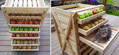 How to Make Food Storage Shelf - DIY & Crafts - Handimania Food Storage Shelves, Diy Kitchen Storage, Flat Ideas, Palette, Beautiful Kitchens, Diy Food, Diy Furniture, Craft Supplies, Woodworking
