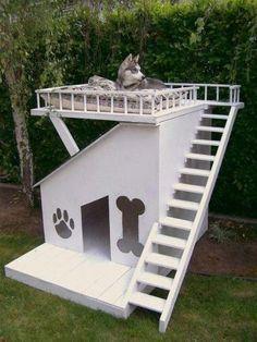 Doghouse w/ a raised platform - DIY doghouse ideas