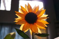 Paper sunflowers! Paper Sunflowers, Happy Flowers, Office Decor, Black And Brown, Wedding Bouquets, Floral, Plants, Gifts, Handmade