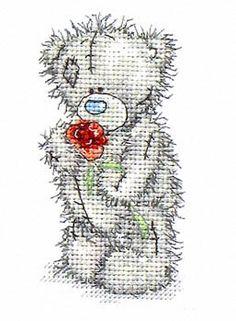 Teddy Con Rosa 1