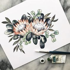 Pink king protea flowers with eucalyptus watercolor mix art print // floral garden plant blush Protea Art, Protea Flower, Flower Mandala, Flower Art, Plant Drawing, Drawing Flowers, Watercolor Mixing, Watercolour, Native Tattoos
