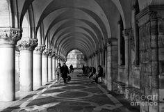 White Columns In San Marco Photograph by John Rizzuto.