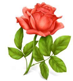 Baú de Figuras: Rosas vermelhas imagens decoupage