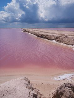 Beautiful Pink salt lakes in Rio Lagartos, Mexico