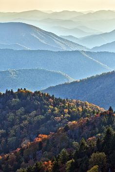 "Blue Ridge Mountains of the Appalachian Mountain Range. The ""bluish haze"" derives from isoprene from the trees. Gorgeous!"